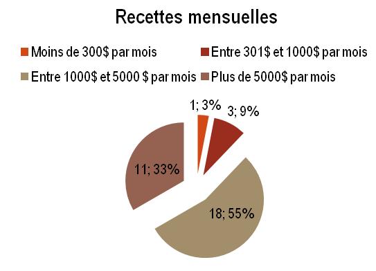 KIN - Recettes mensuelles